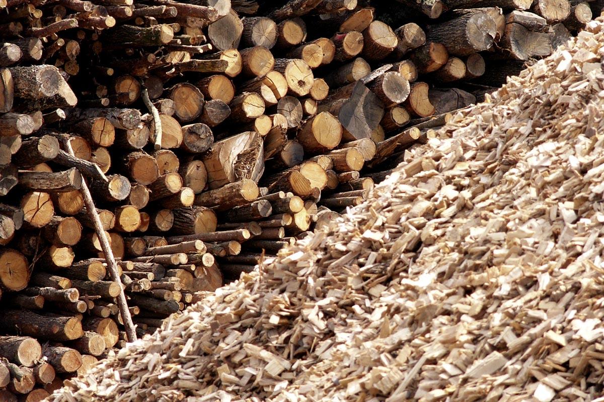 Holz-Hackgut, Foto: Projektfabrik, Waldhör KG