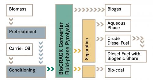 Source: OMV and BDI - BioEnergy International AG