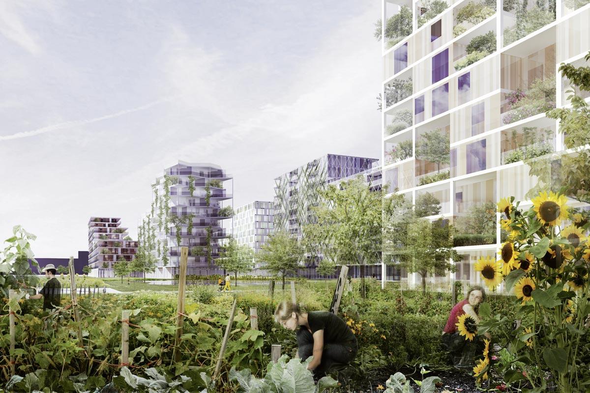 "Urban Farming Projekt Liesing Mitte ""Garteln Hoch 3 / In der Wien Ost"", Quelle: STUDIOVLAY"