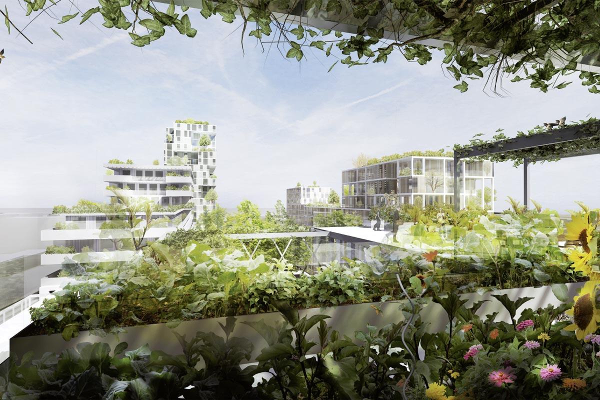 """Freiraumtypologien Leasing Mitte """"Garten Hoch 3 / In der Wiesen Ost"""", Quelle: STUDIOVLAY"""