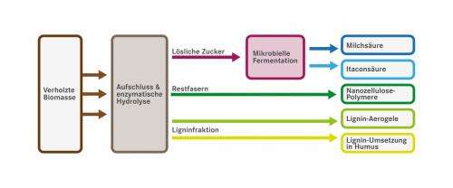 Grafik: Universität für Bodenkultur Wien