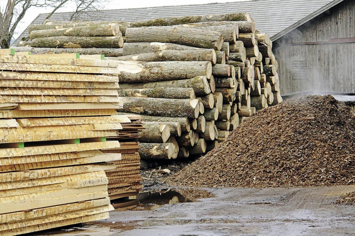 Rohstoff Holz, Foto: FH Salzburg
