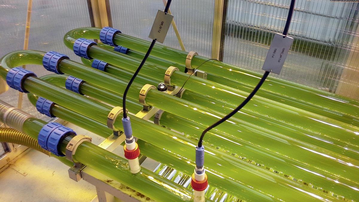 Bioreaktor am EVN-Standort Dürnrohr/Niederösterreich, Foto: EVN AG