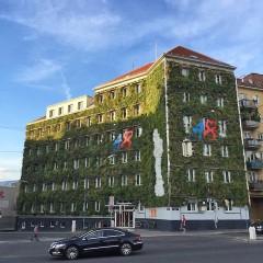 Best-practice example of façade greening in Vienna, photo: GRÜNSTATTGRAU