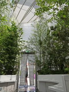 Airship.01 im Museumsquartier Wien (bis 15.9.2019) Im Inneren 12 Bäume, 200 Stauden, der Pavillon ist nach oben geöffnet und mit reflektierender Außenmembran, Ventilatoren und Sprühnebelsystem ausgestattet, Foto: Waldhör KG