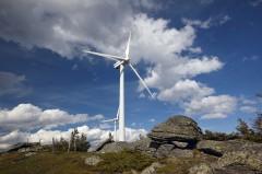 Foto.: Klima- und Energiefonds/Hans Ringhofer